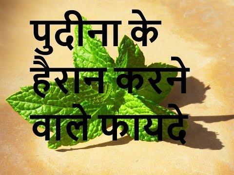 पुदीना के हैरान करने  वाले फायदे , Amazing health Benefits of Mint leaves pudina happywaylife