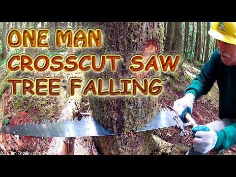 One Man Crosscut Saw Tree Falling