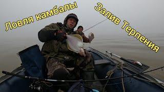 Ловля камбалы Двое в лодке и собака Сахалинская рыбалка Sakhalin fishing Сахалинская рыбалка