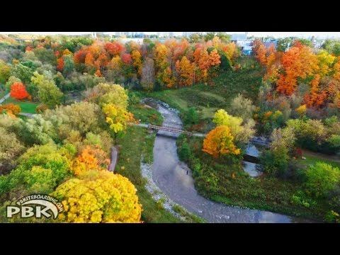 Toronto Fall Autumn Colors Ontario Canada Maple Trees Colors