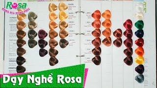 Nhuộm tóc: Tìm hiểu về màu thuốc nhuộm trước khi thực hành