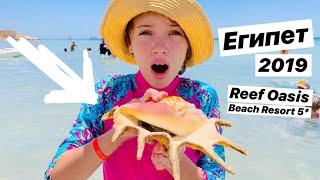 Reef Oasis Beach Resort 5 2019 питание море территория джакузи Наша Маша влог