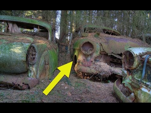 These Cars In The For Were Abando** By American Soldiers During WWII