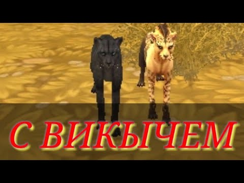 ИГРАЮ С Viki Cat !