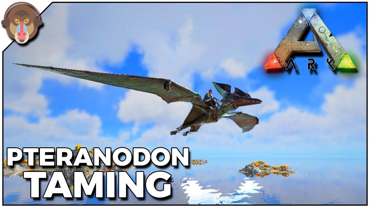 ark survival evolved pteranodon kibble recipe
