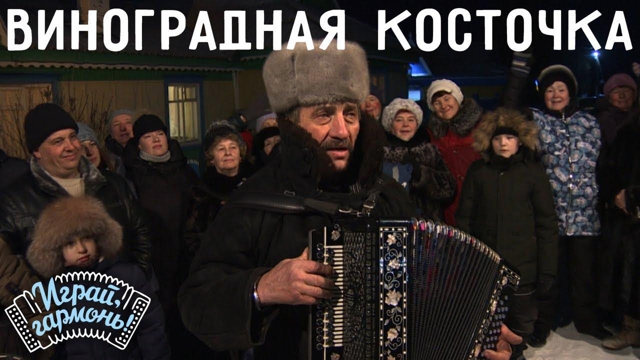 Играй, гармонь! | Валерий Клейко (Красноярский край) | Виноградная косточка