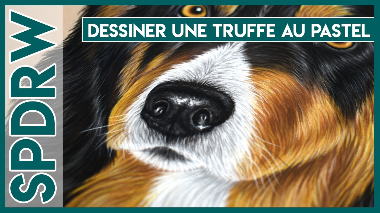 speed drawing n 11 dessiner une truffe de chien au pastel close to art youtube. Black Bedroom Furniture Sets. Home Design Ideas