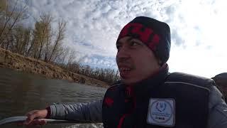 Рыбалка Цаган Аман База Экопорт Часть 4 Сом судак и собака