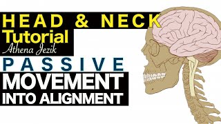 Athena Jezik - Passive Movement Into Alignment - Head & Neck Tutorial