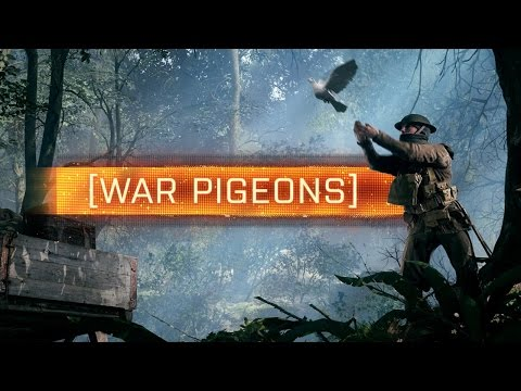 How to Play War Pigeons in Battlefield 1
