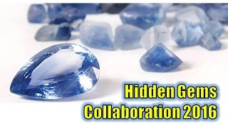 Hidden Gems Major Reviewer Collaboration 2016