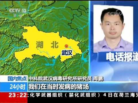 CCTV中央电视台《24小时》 20180405 湖北武汉研究所发现新型冠状病毒