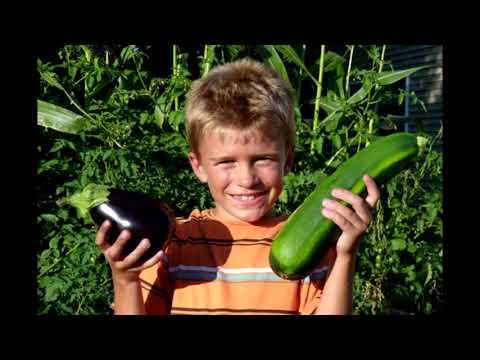 Growing Children in the Gardens