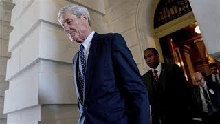 The Mueller Investigation By the Numbers