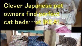 Japanese Cat Owners Turn Ikea Doll Beds Into Adorable Cat Beds イケアの人形用ベッド、日本での使い方に世界のネコ好き大絶賛