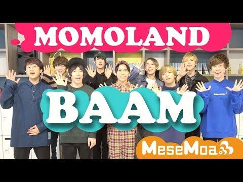男9人でMOMOLAND - BAAM Covered by only men