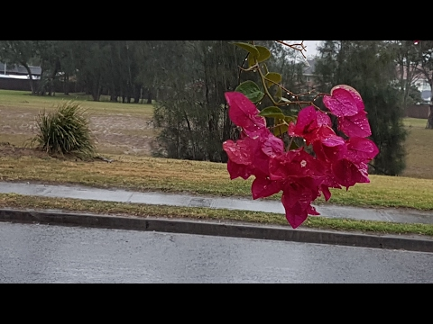 FLOODING HEAVY RAIN SYDNEY METROPOLITAN Freezing Winter Today 7/6/2017