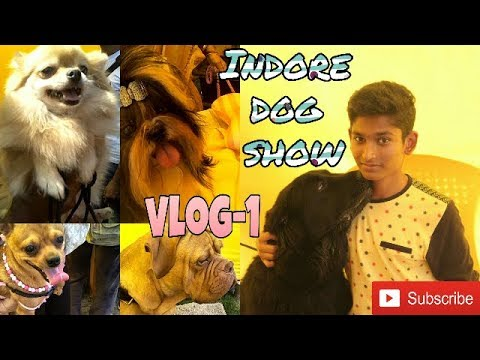 Indore dog show 2017 |  Vlog-1 | Doggies Squad |