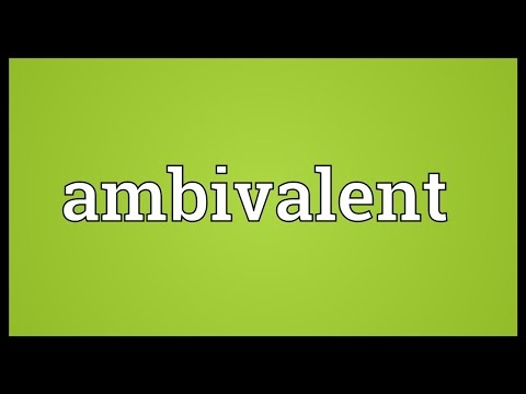 Ambivalent Meaning