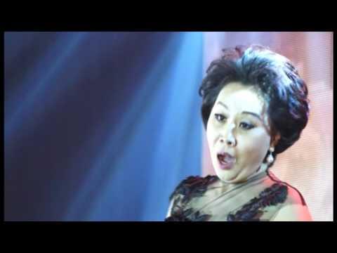 张小佳,Zhang Xiao Jia.演唱会