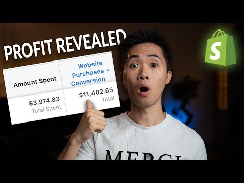 🔥Motivation! 💵Profit Revealed! How Much Profit on 2.5K/Day?  | Shopify Dropshipping Journey 2018