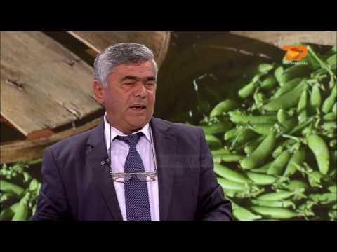 Ne Shtepine Tone, 24 Maj 2016, Pjesa 2 - Top Channel Albania - Entertainment Show