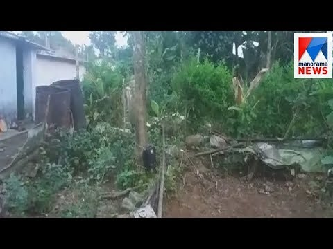 Forest Department Install CCTV To Monitor Movements Of Leopard In Malakkappara | Manorama News