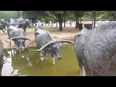 Dallas City Travel Guide; Dallas Cattle Drive Sculptures.