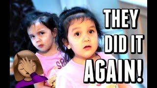OOPS! THEY DID IT AGAIN! - January 11, 2018 -  ItsJudysLife Vlogs