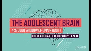 The Adolescent Brain: A second window of opportunity