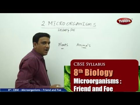 microorganisms friend or foe