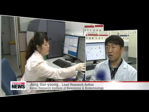 Korean researchers discover aging & cancer-related gene 인간의 노화 '억제 유전자' 발견