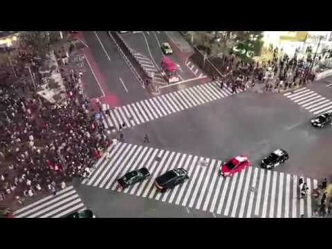 Shibuya Crossing - Tokyo, Japan.  One Of The Busiest Intersections In The World