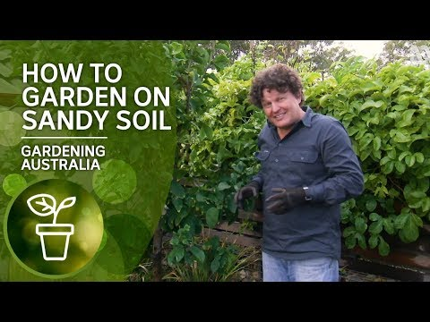 How To Garden On Sandy Soil