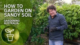 How to garden on sandy soil