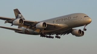 Wide-body arrivals and departures at Mumbai International Airport thumbnail