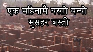 १ महिनामै यस्तो बन्यो मुसहर बस्ती || Namuna Musahar Basti Update || Dhurmush Suntali Foundation