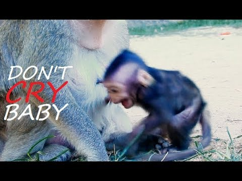 DON'T CRY DON'T CRY | Don't Cry My Beautiful Baby Lizza | Lizza Seizure Cry Drama Asked Mom For Milk