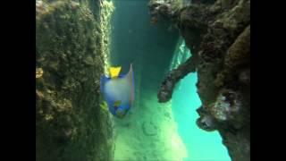 Gopro: Isla Larga Snorkel