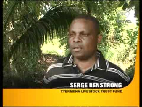 SBC Seychelles:  Livestock Trust Fund to Support Farmers.wmv