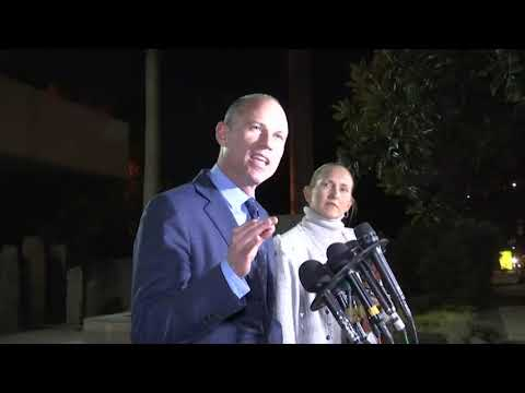 Michael Avenatti arrested, released in Los Angeles