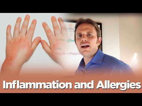 Inflammation and Allergies