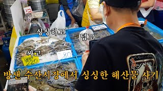 방샌 수산시장에서 싱싱한 해산물 사기(feat.욕없는컨…