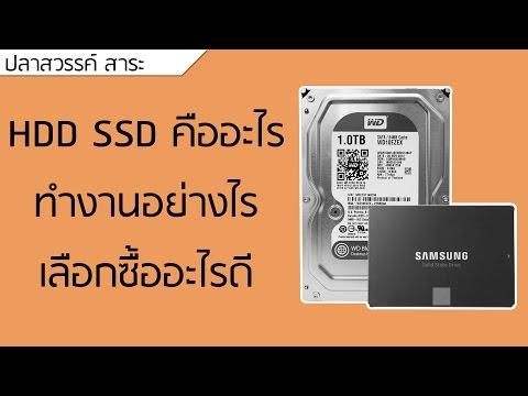 ปลาหวันทีวี #66 - HDD SSD คืออะไร ทำงานยังไง เลือกซื้ออะไรดี