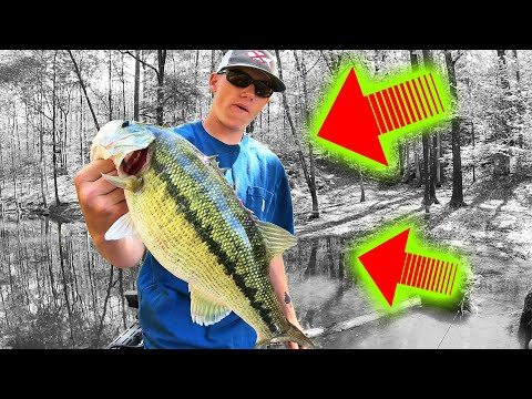 HE Caught The LAKE RECORD Bass (TWICE) In A Fishing TOURNAMENT!!!