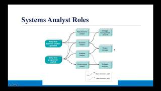 Who is System Analyst ?