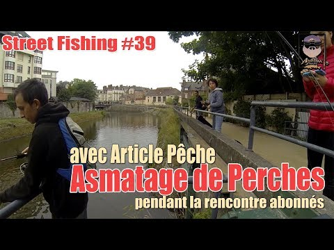 StreetFishing #39 Asmatage de perches à la rencontre abonnés #kickringerreins
