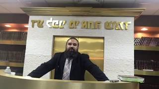 STUMP THE RABBI (PART 5) Torah vs Biz, Halfway Jew, Basketball, Evolution, HELL, Picking Rabbi