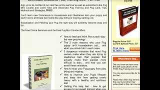*Pug and Puggle Potty Training YOU Don't Want To Miss! Free 5 Day Minicourse HERE**:)))