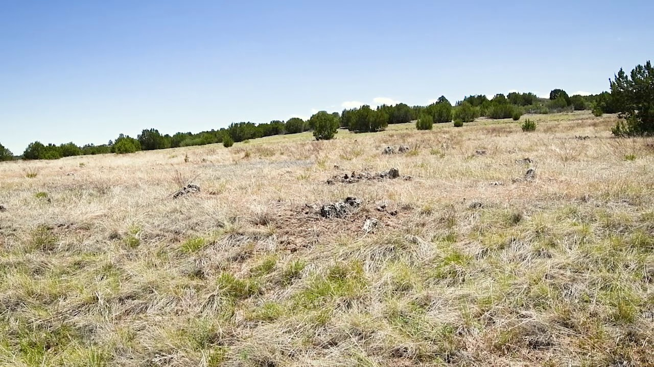 0.19 Acres – In Colorado City, Pueblo County CO